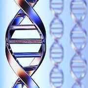 Существуют ли базы данных ДНК?