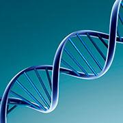 Стандартные образцы для генетического анализа и их сроки годности.